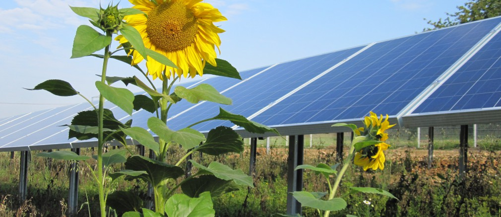 Photovoltaik: Projekt Himmelstadt